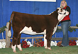 Full Sister, C Got Game Nitro 9182 at Reno.