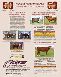 2015 Western Nugget National Hereford Sale - Click to view