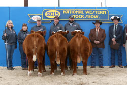 Grand Champion Pen of Heifers - Click to enlarge