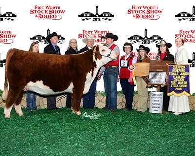 Reserve Grand Champion Female - click to enlarge