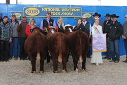 Reserve Junior Heifer Calf Champion - click to enlarge